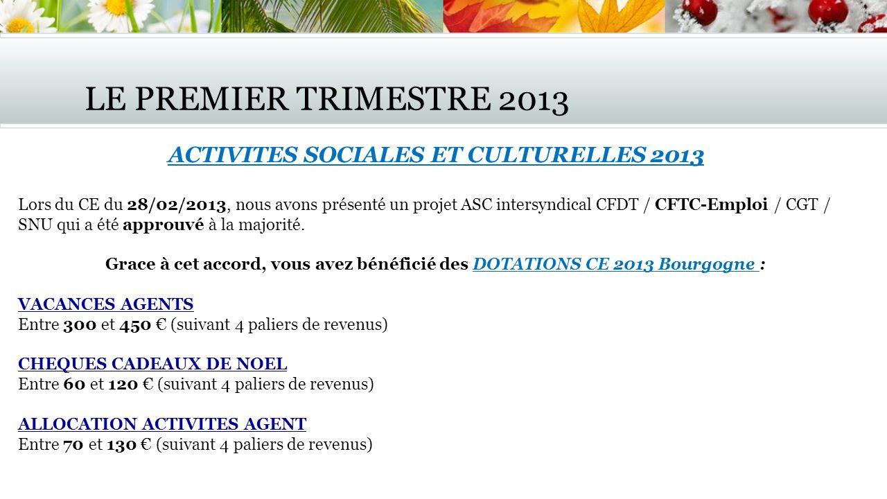 ACTIVITES SOCIALES ET CULTURELLES 2013