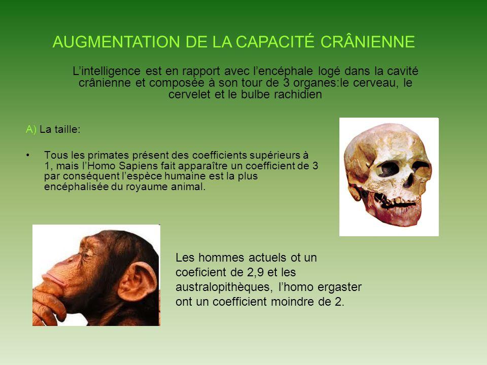 AUGMENTATION DE LA CAPACITÉ CRÂNIENNE