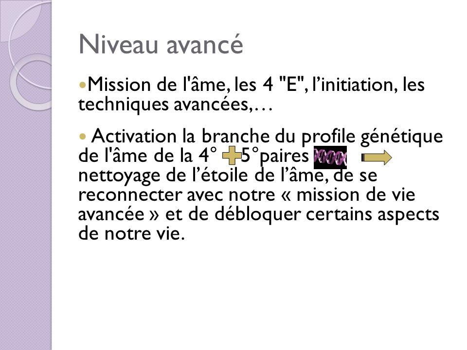 Niveau avancé Mission de l âme, les 4 E , l'initiation, les techniques avancées,…