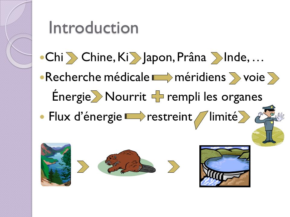 Introduction Chi Chine, Ki Japon, Prâna Inde, …