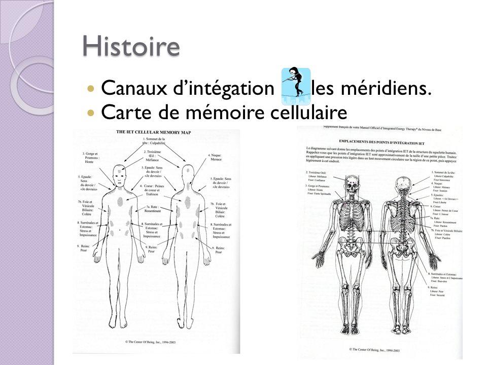 Histoire Canaux d'intégation les méridiens.