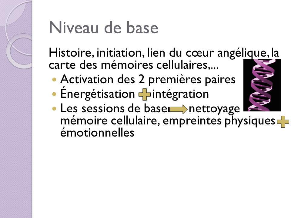 Niveau de base Histoire, initiation, lien du cœur angélique, la carte des mémoires cellulaires,... Activation des 2 premières paires.