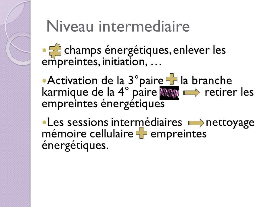 Niveau intermediaire champs énergétiques, enlever les empreintes, initiation, …