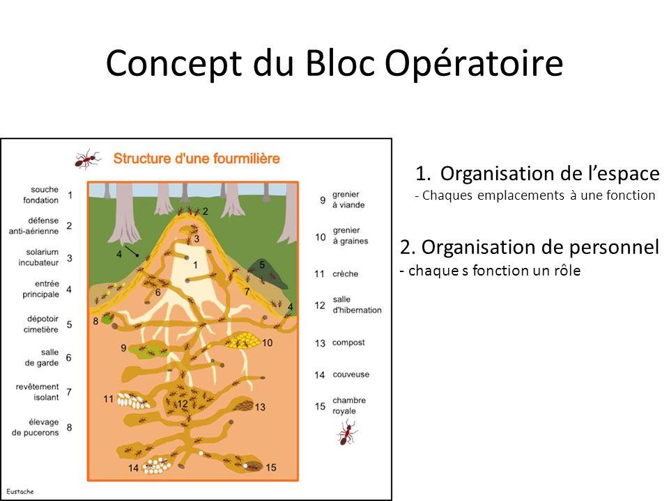 Concept du Bloc Opératoire