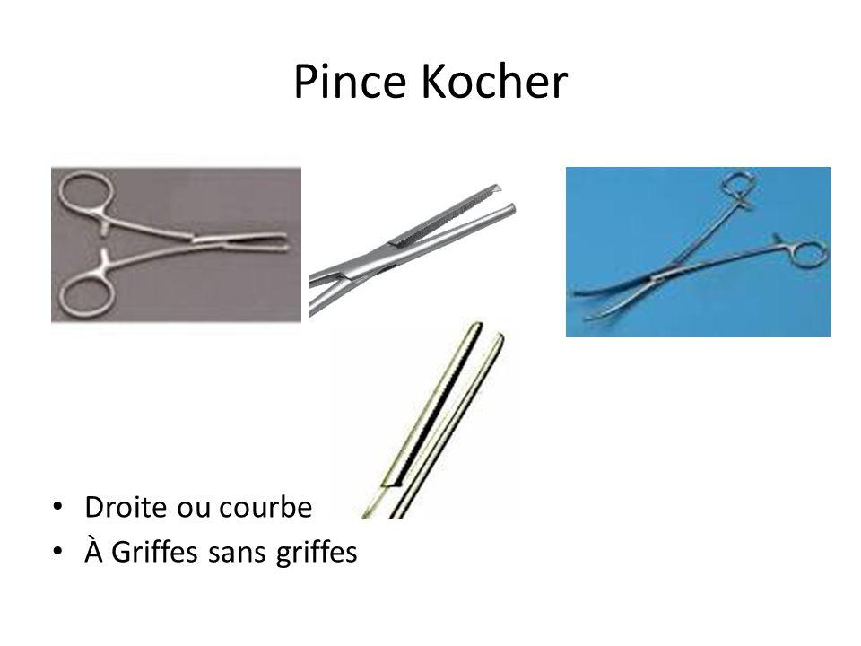 Pince Kocher Droite ou courbe À Griffes sans griffes