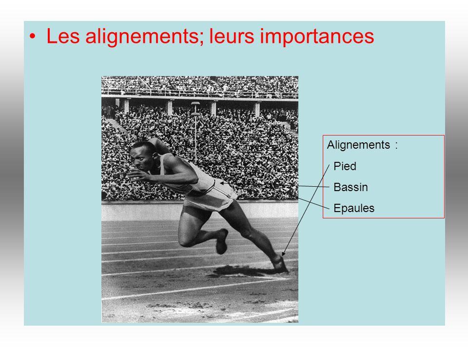 Les alignements; leurs importances