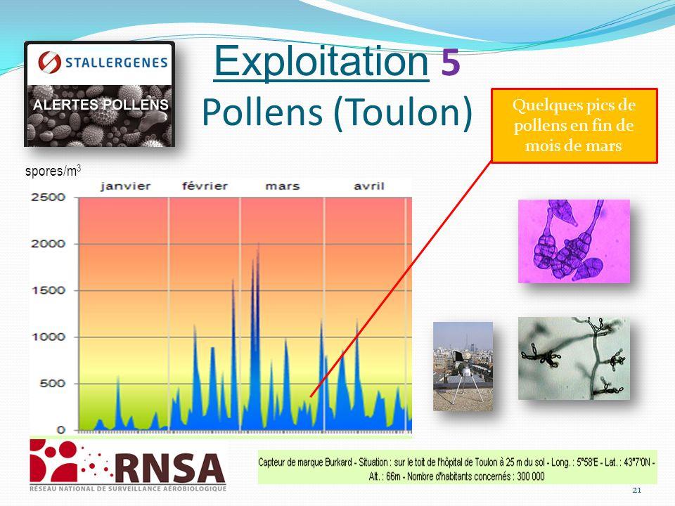Exploitation 5 Pollens (Toulon)