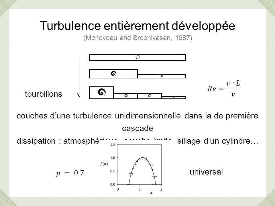Turbulence entièrement développée