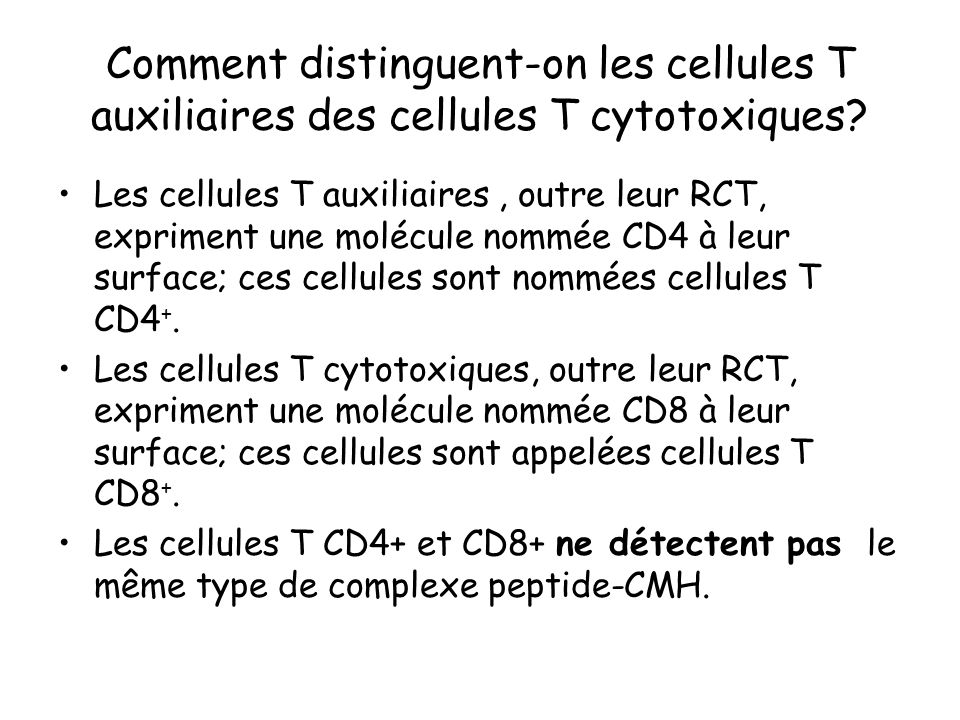 Comment distinguent-on les cellules T auxiliaires des cellules T cytotoxiques