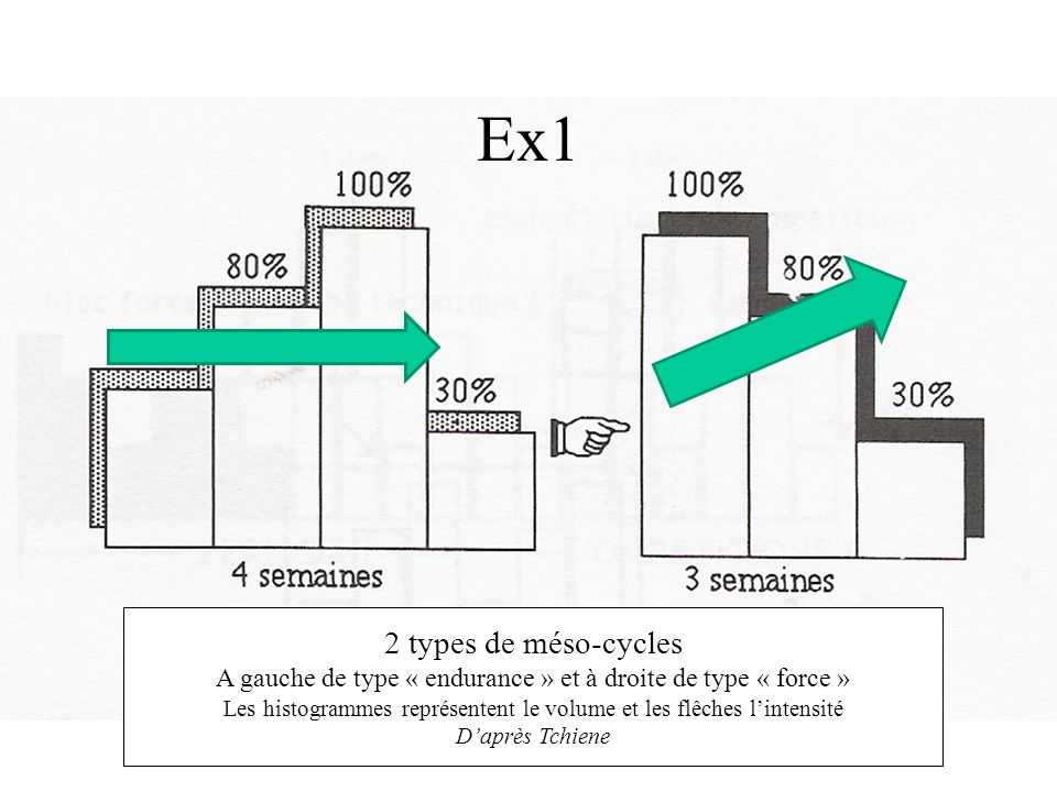Ex1 2 types de méso-cycles