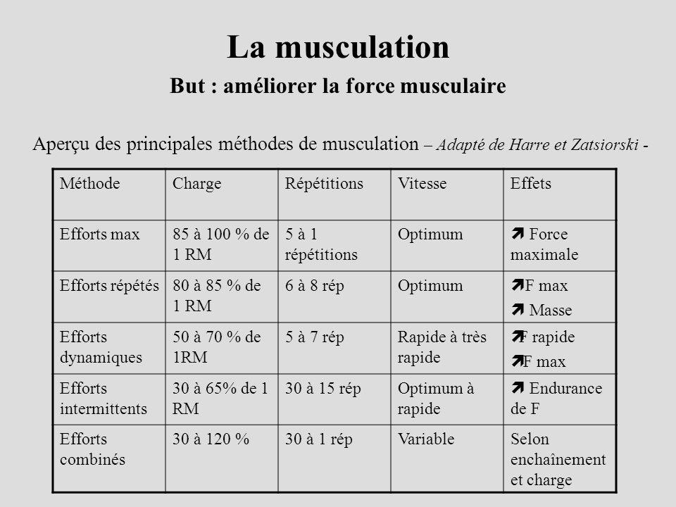 But : améliorer la force musculaire