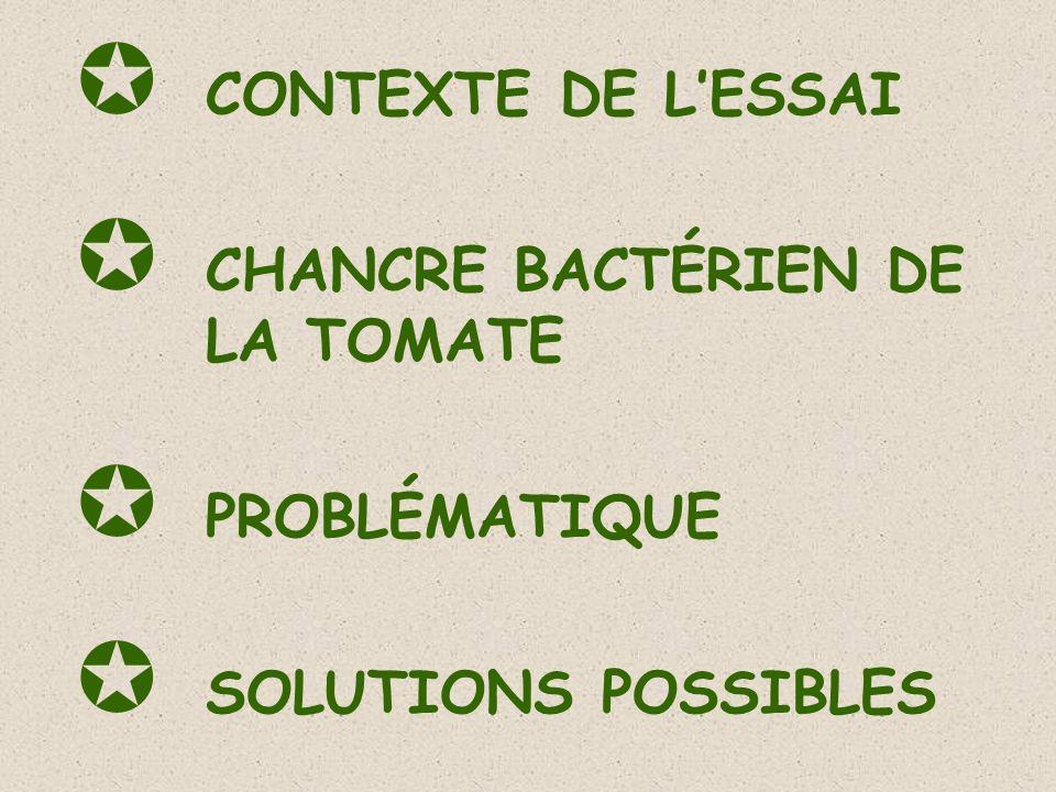 CONTEXTE DE L'ESSAI CHANCRE BACTÉRIEN DE LA TOMATE PROBLÉMATIQUE SOLUTIONS POSSIBLES