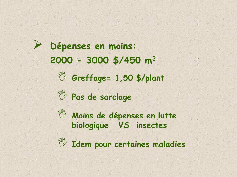 Dépenses en moins: 2000 - 3000 $/450 m2 Greffage= 1,50 $/plant