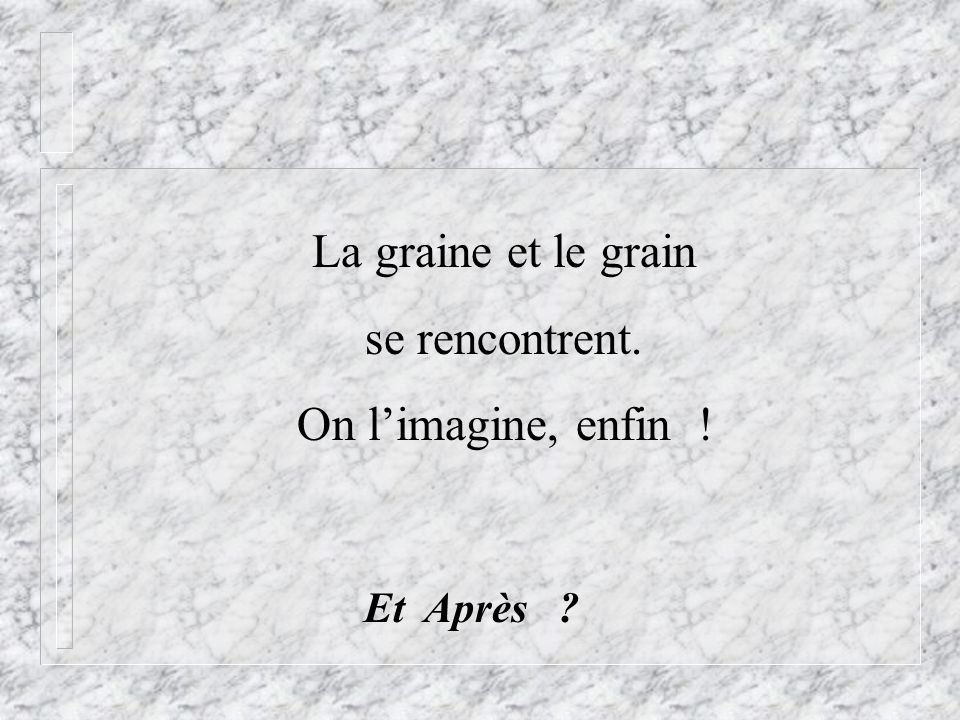 La graine et le grain se rencontrent. On l'imagine, enfin ! Et Après