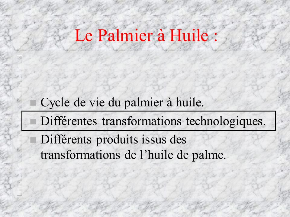 Le Palmier à Huile : Cycle de vie du palmier à huile.