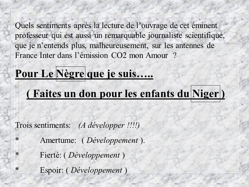 ( Faites un don pour les enfants du Niger )
