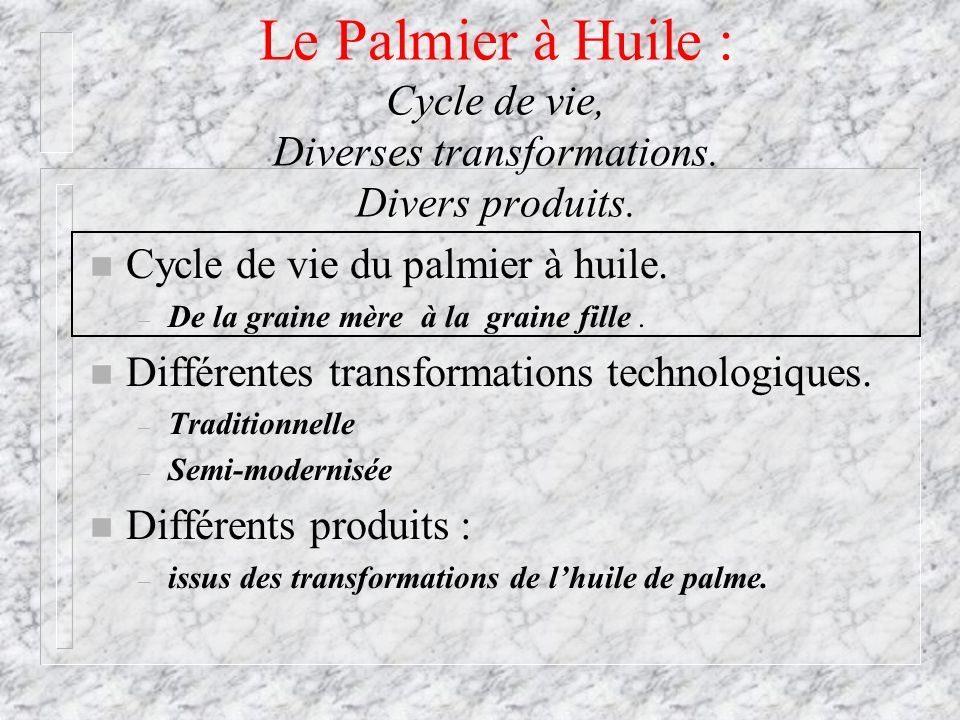 Le Palmier à Huile : Cycle de vie, Diverses transformations