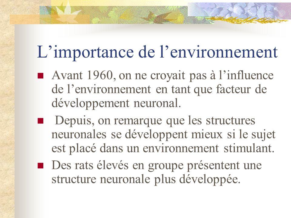 L'importance de l'environnement