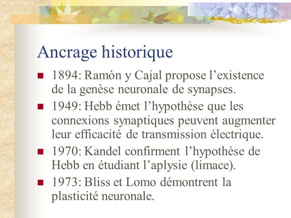 Ancrage historique 1894: Ramòn y Cajal propose l'existence de la genèse neuronale de synapses.