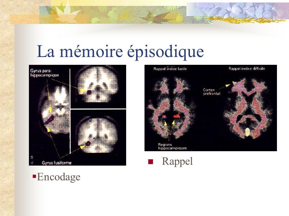 La mémoire épisodique Rappel Encodage