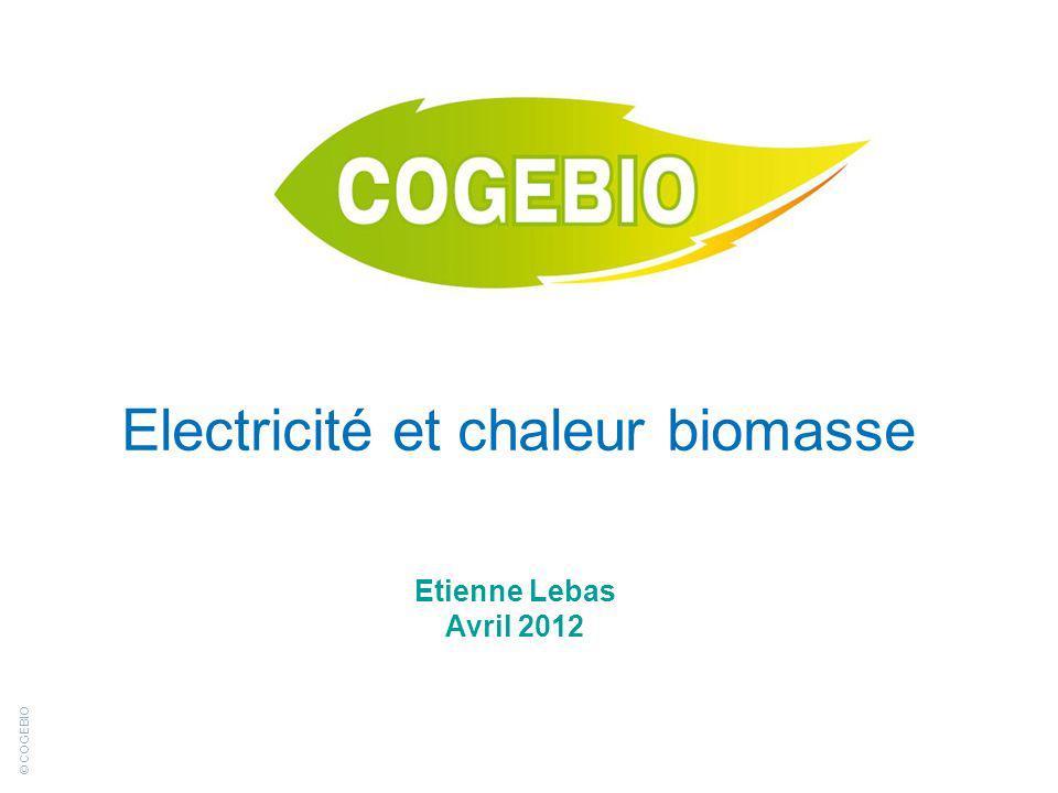 Electricité et chaleur biomasse