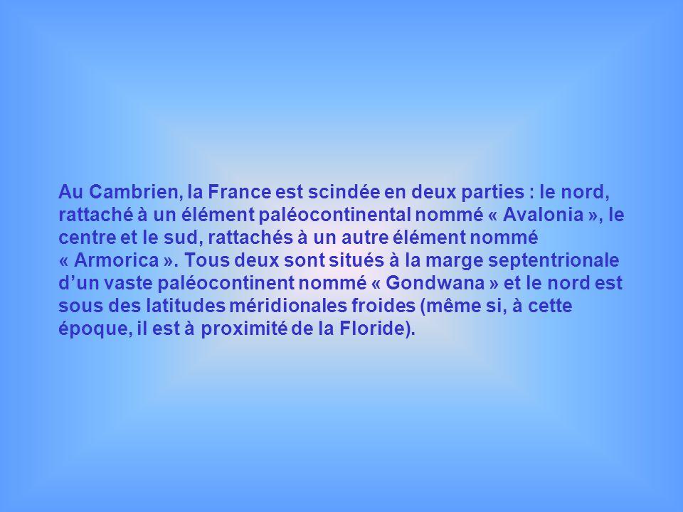 Au Cambrien, la France est scindée en deux parties : le nord, rattaché à un élément paléocontinental nommé « Avalonia », le centre et le sud, rattachés à un autre élément nommé « Armorica ».