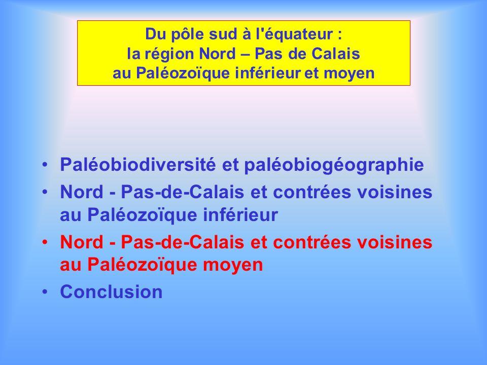 Paléobiodiversité et paléobiogéographie