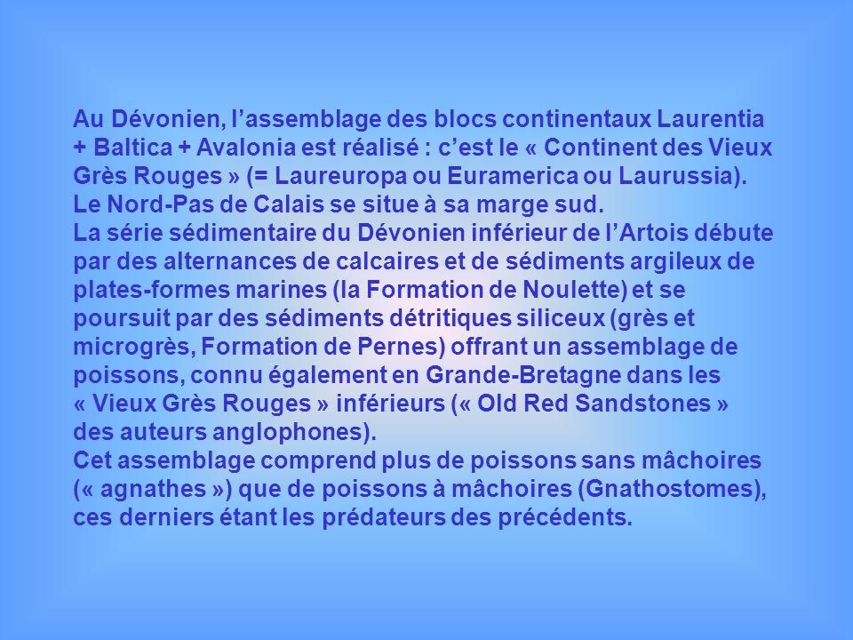 Au Dévonien, l'assemblage des blocs continentaux Laurentia + Baltica + Avalonia est réalisé : c'est le « Continent des Vieux Grès Rouges » (= Laureuropa ou Euramerica ou Laurussia). Le Nord-Pas de Calais se situe à sa marge sud.