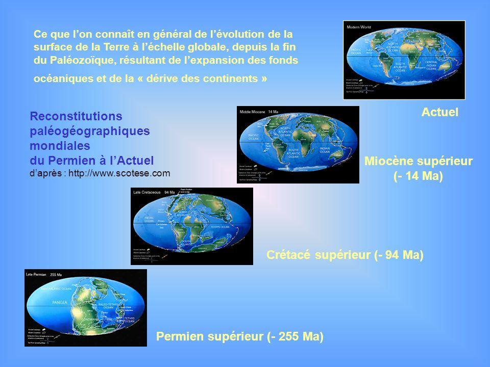 Miocène supérieur (- 14 Ma)