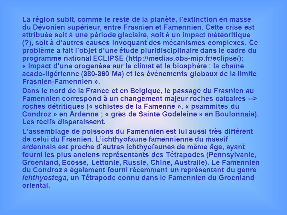 La région subit, comme le reste de la planète, l'extinction en masse du Dévonien supérieur, entre Frasnien et Famennien. Cette crise est attribuée soit à une période glaciaire, soit à un impact météoritique ( ), soit à d'autres causes invoquant des mécanismes complexes. Ce problème a fait l'objet d'une étude pluridisciplinaire dans le cadre du programme national ECLIPSE (http://medias.obs-mip.fr/eclipse/): « Impact d une orogenèse sur le climat et la biosphère : la chaîne acado-ligérienne (380-360 Ma) et les événements globaux de la limite Frasnien-Famennien ».