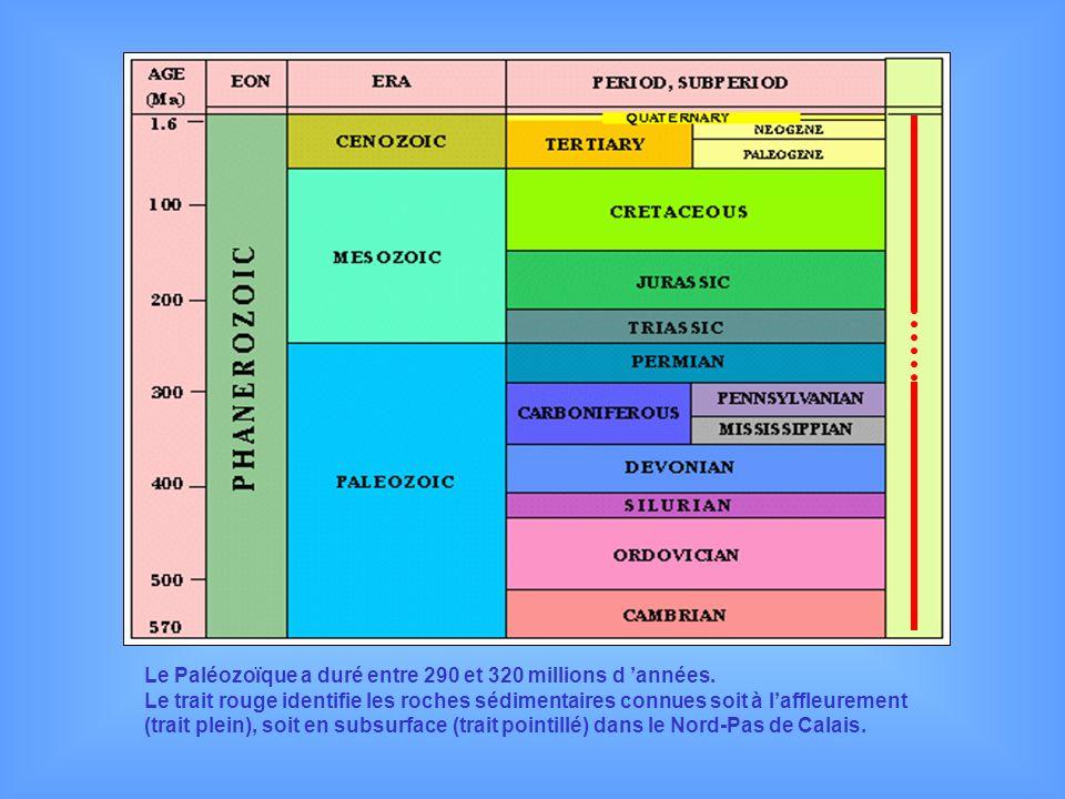 Le Paléozoïque a duré entre 290 et 320 millions d 'années.