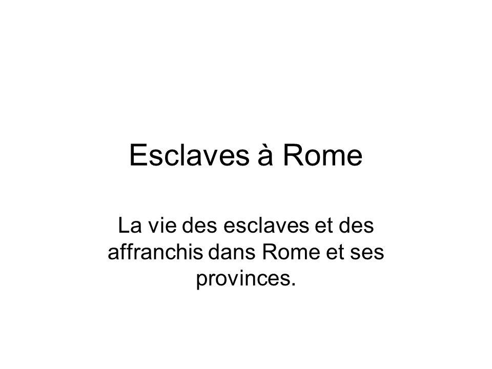La vie des esclaves et des affranchis dans Rome et ses provinces.