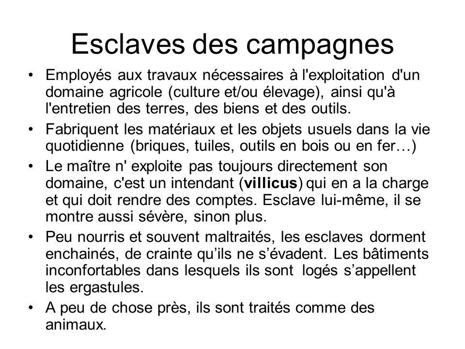 Esclaves des campagnes