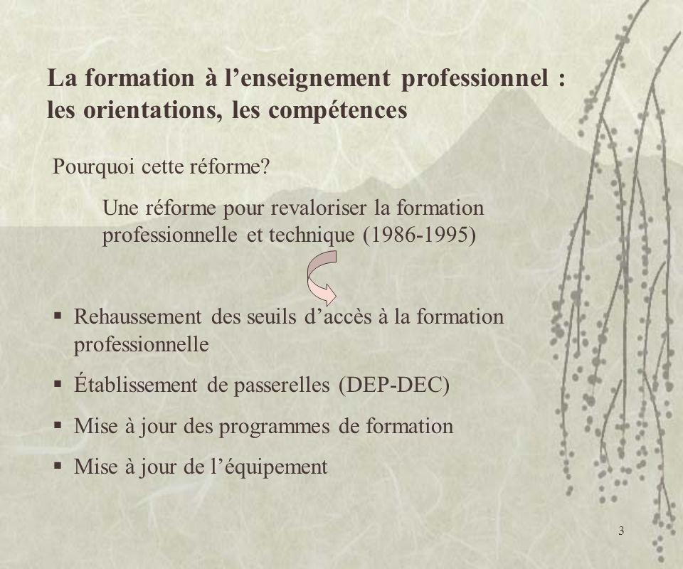La formation à l'enseignement professionnel :