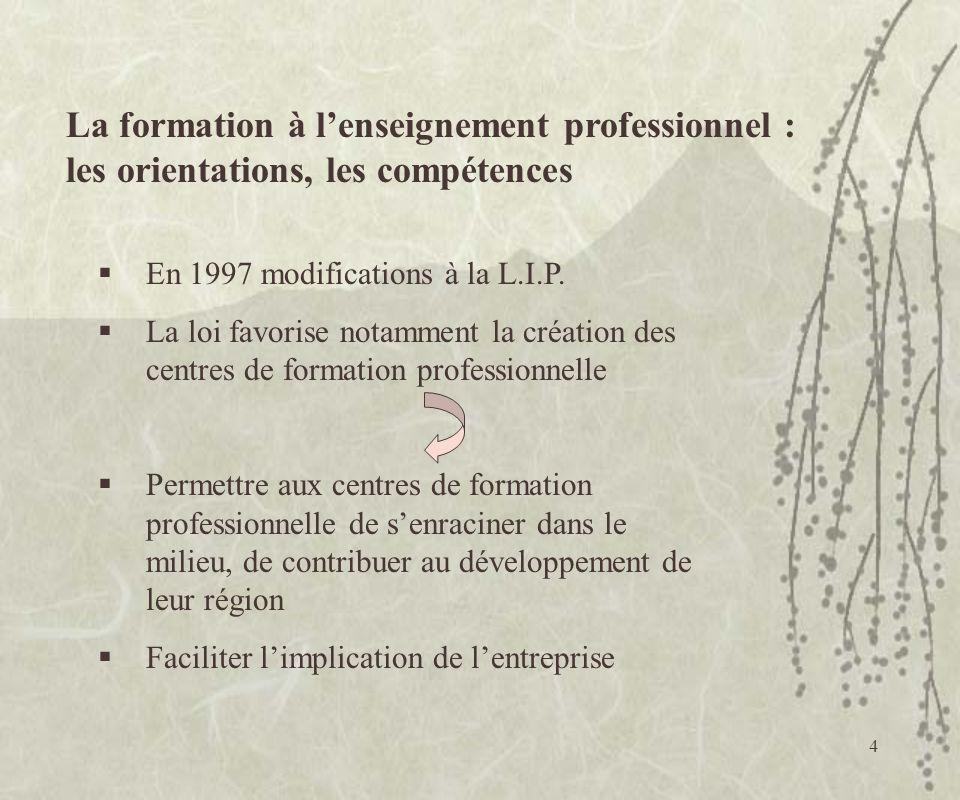 La formation à l'enseignement professionnel : les orientations, les compétences