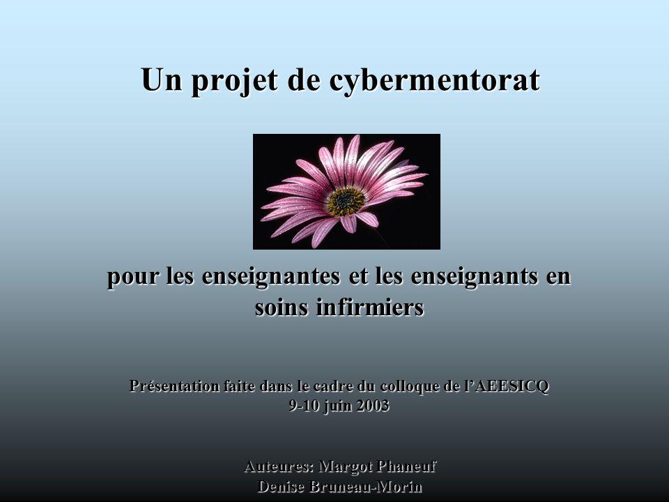 Un projet de cybermentorat