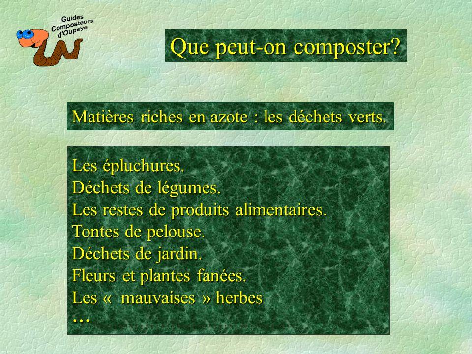 Que peut-on composter Matières riches en azote : les déchets verts. Les épluchures. Déchets de légumes.