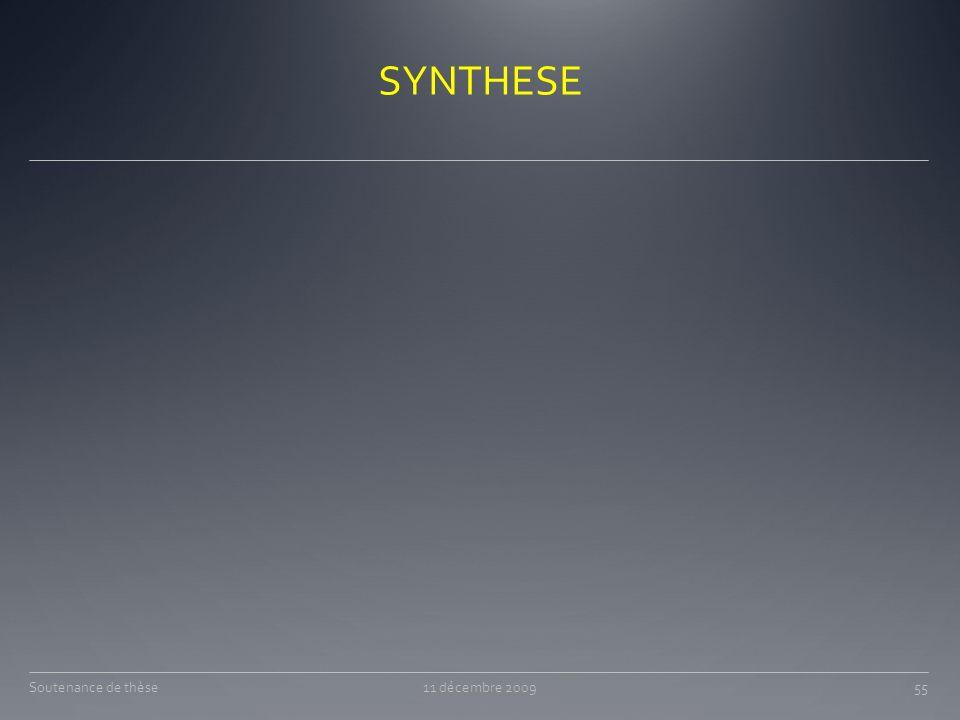 SYNTHESE Soutenance de thèse 11 décembre 2009