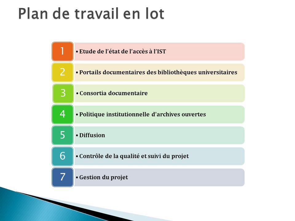 Plan de travail en lot 1 Etude de l'état de l'accès à l'IST 2