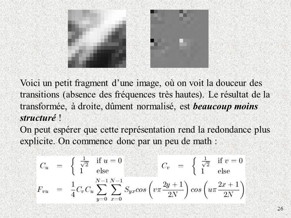 Voici un petit fragment d'une image, où on voit la douceur des transitions (absence des fréquences très hautes). Le résultat de la transformée, à droite, dûment normalisé, est beaucoup moins structuré !