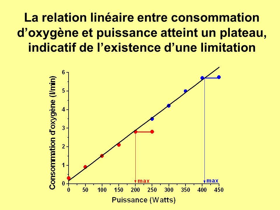 La relation linéaire entre consommation d'oxygène et puissance atteint un plateau, indicatif de l'existence d'une limitation