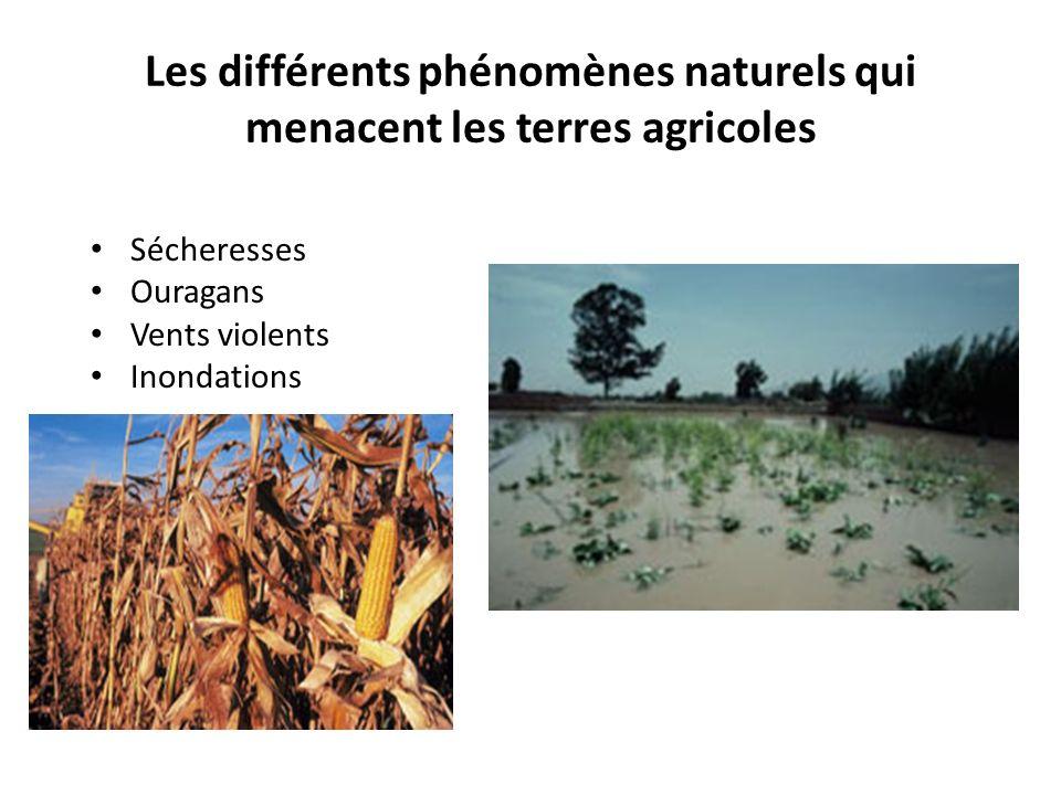 Les différents phénomènes naturels qui menacent les terres agricoles