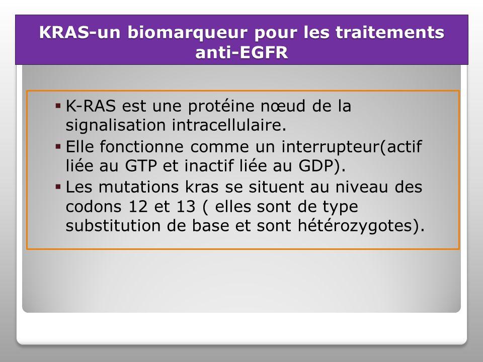 KRAS-un biomarqueur pour les traitements anti-EGFR
