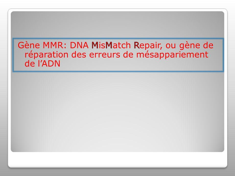 Gène MMR: DNA MisMatch Repair, ou gène de réparation des erreurs de mésappariement de l'ADN
