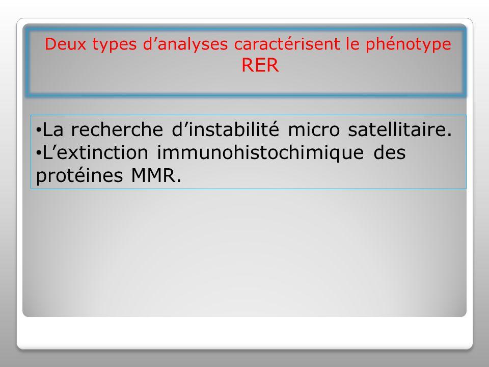 Deux types d'analyses caractérisent le phénotype RER