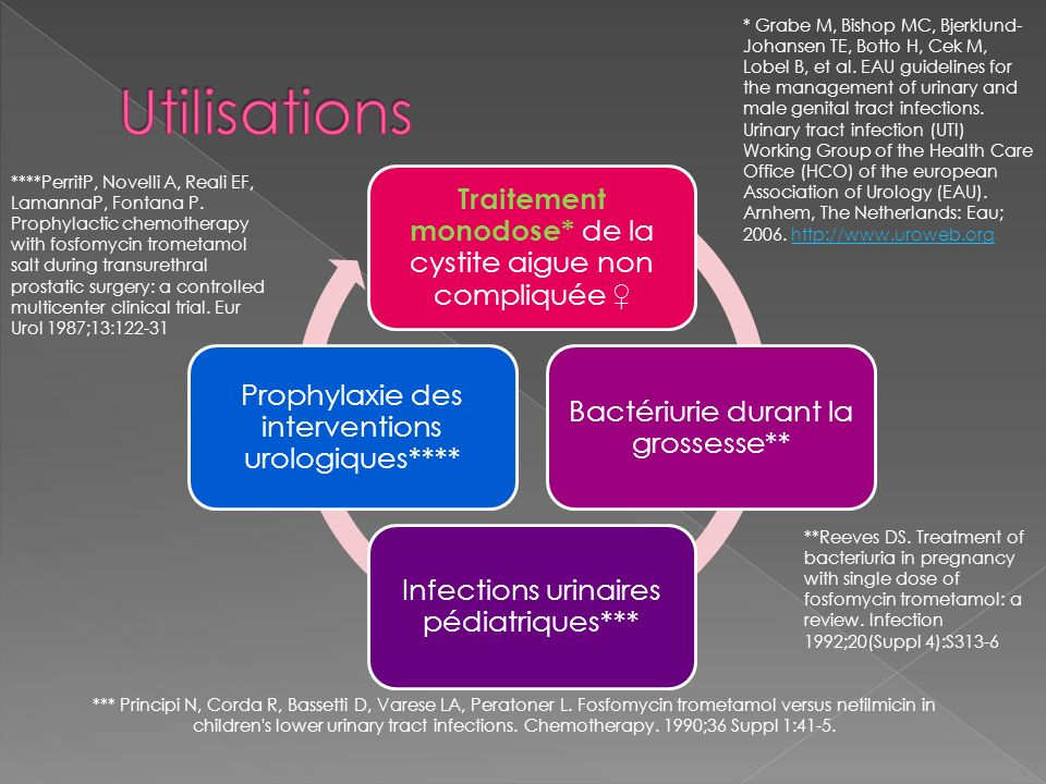 * Grabe M, Bishop MC, Bjerklund-Johansen TE, Botto H, Cek M, Lobel B, et al. EAU guidelines for the management of urinary and male genital tract infections. Urinary tract infection (UTI) Working Group of the Health Care Office (HCO) of the european Association of Urology (EAU). Arnhem, The Netherlands: Eau; 2006. http://www.uroweb.org