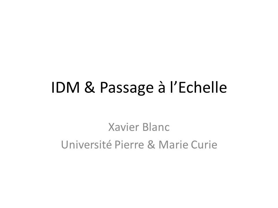 IDM & Passage à l'Echelle