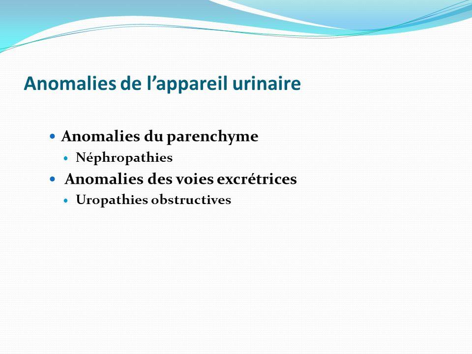 Anomalies de l'appareil urinaire