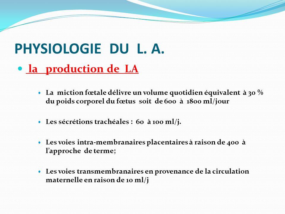 PHYSIOLOGIE DU L. A. la production de LA