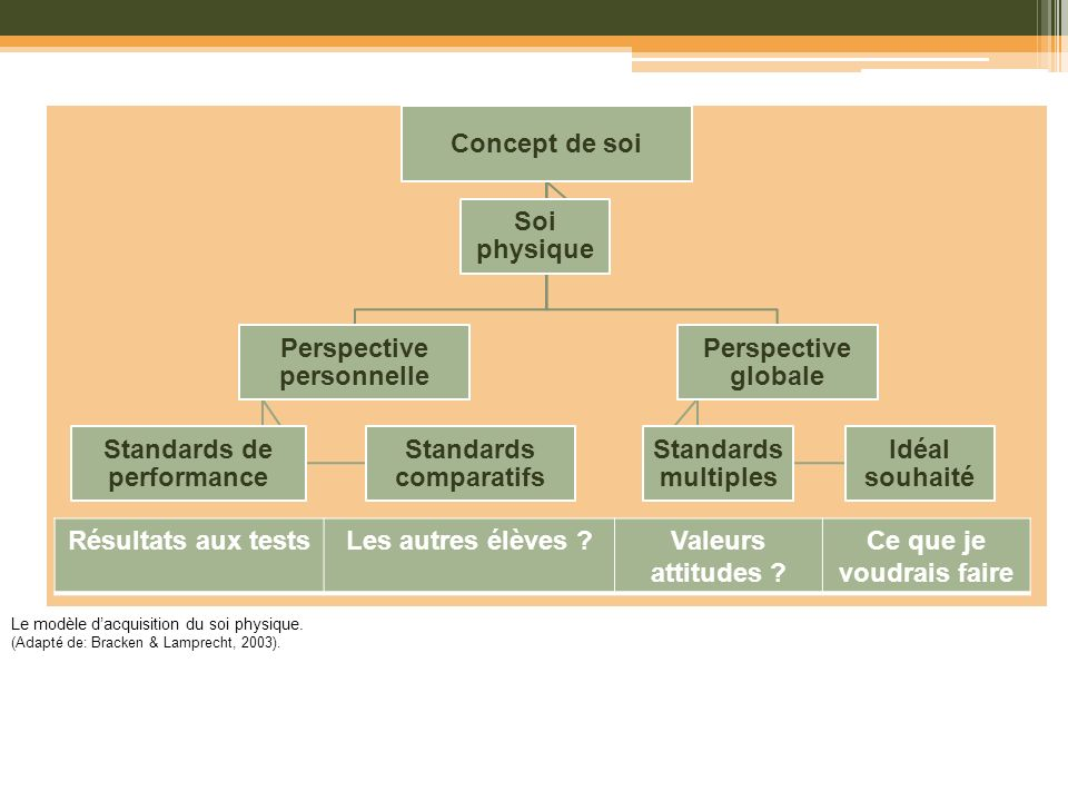 Perspective personnelle Standards comparatifs Standards de performance